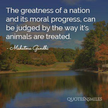 animal gandhi picture quote