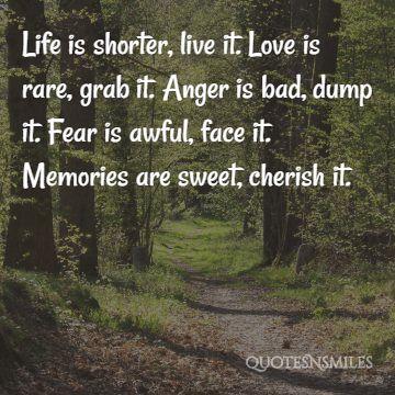 15 Unforgettable Memory Picture Quotes Famous Quotes Love Quotes Inspirational Quotes Quotesnsmiles Com